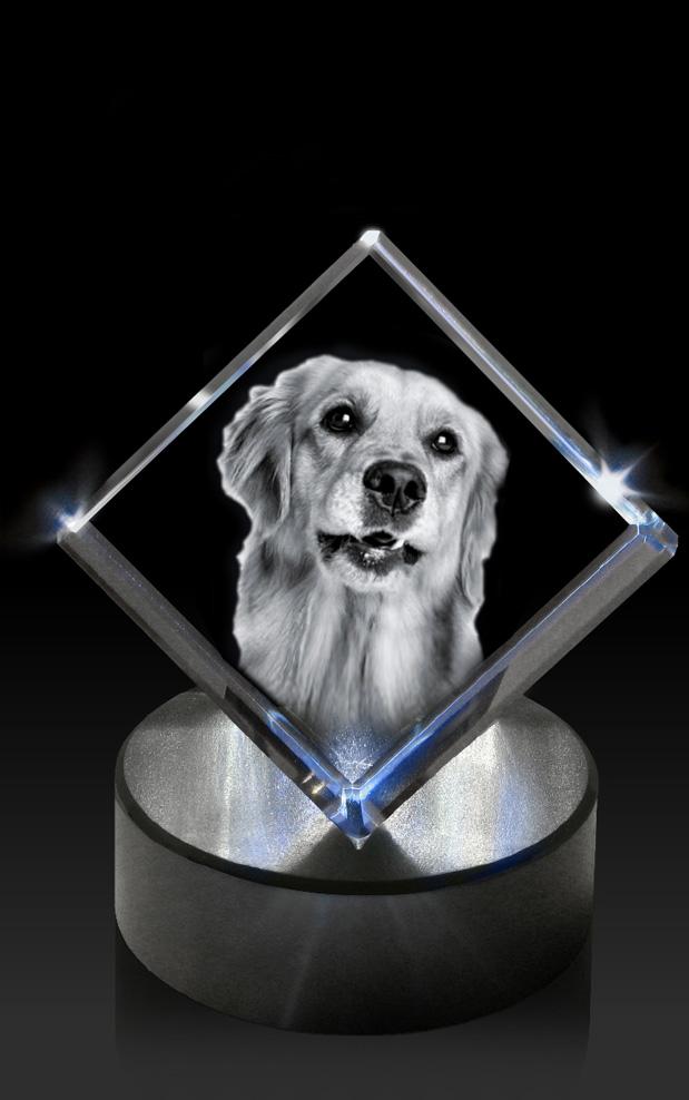 C-LED-sokkel-Hart-hond-op-ronde-kln