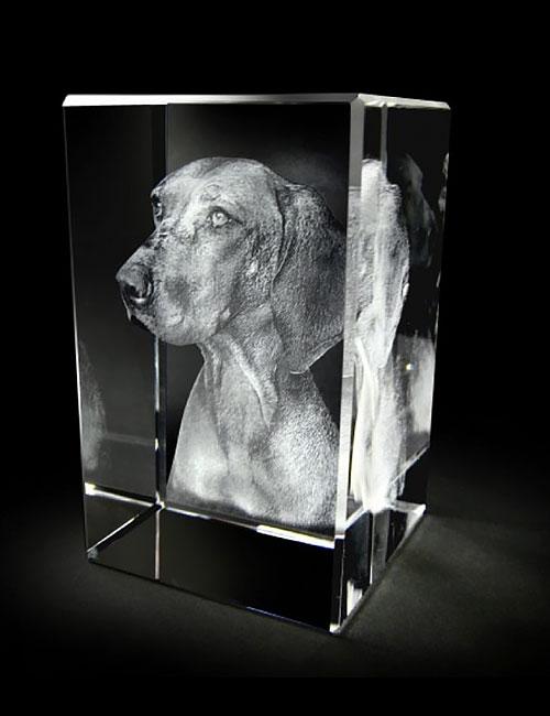 hond-02b-02