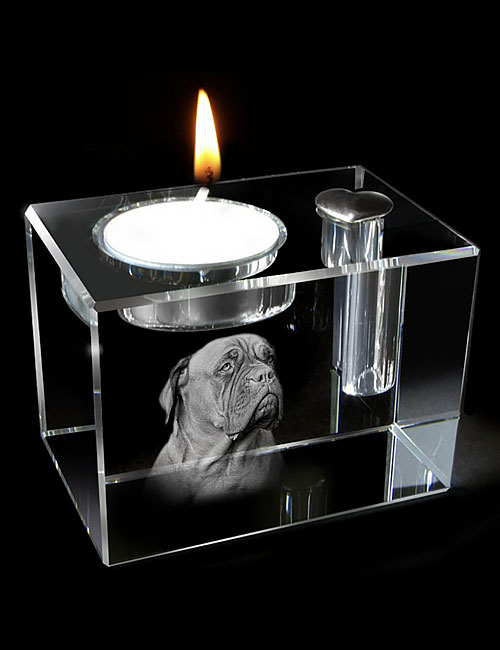 hond-03b-02